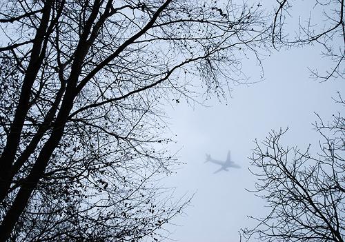 Flugzeug über Niendorfer Gehege
